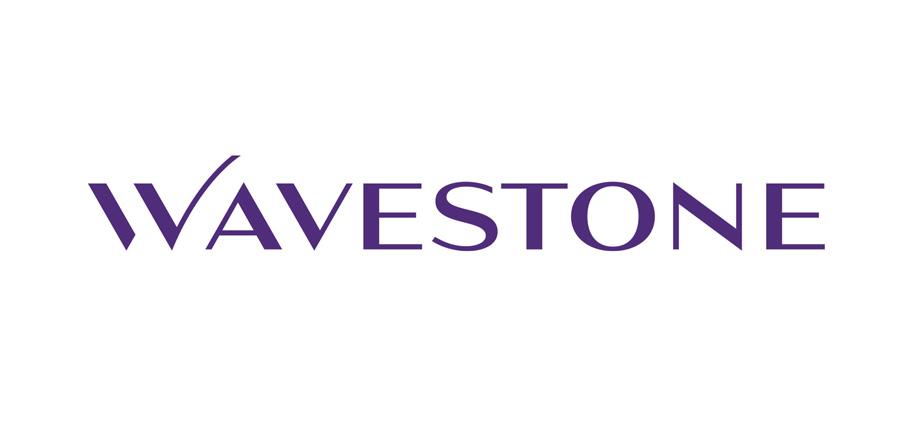 Logo de Wavestone