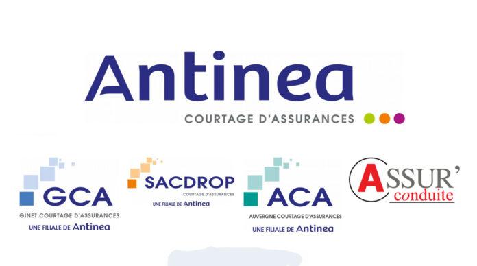 Antinea courtage