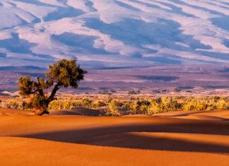 Un paysage en Afrique