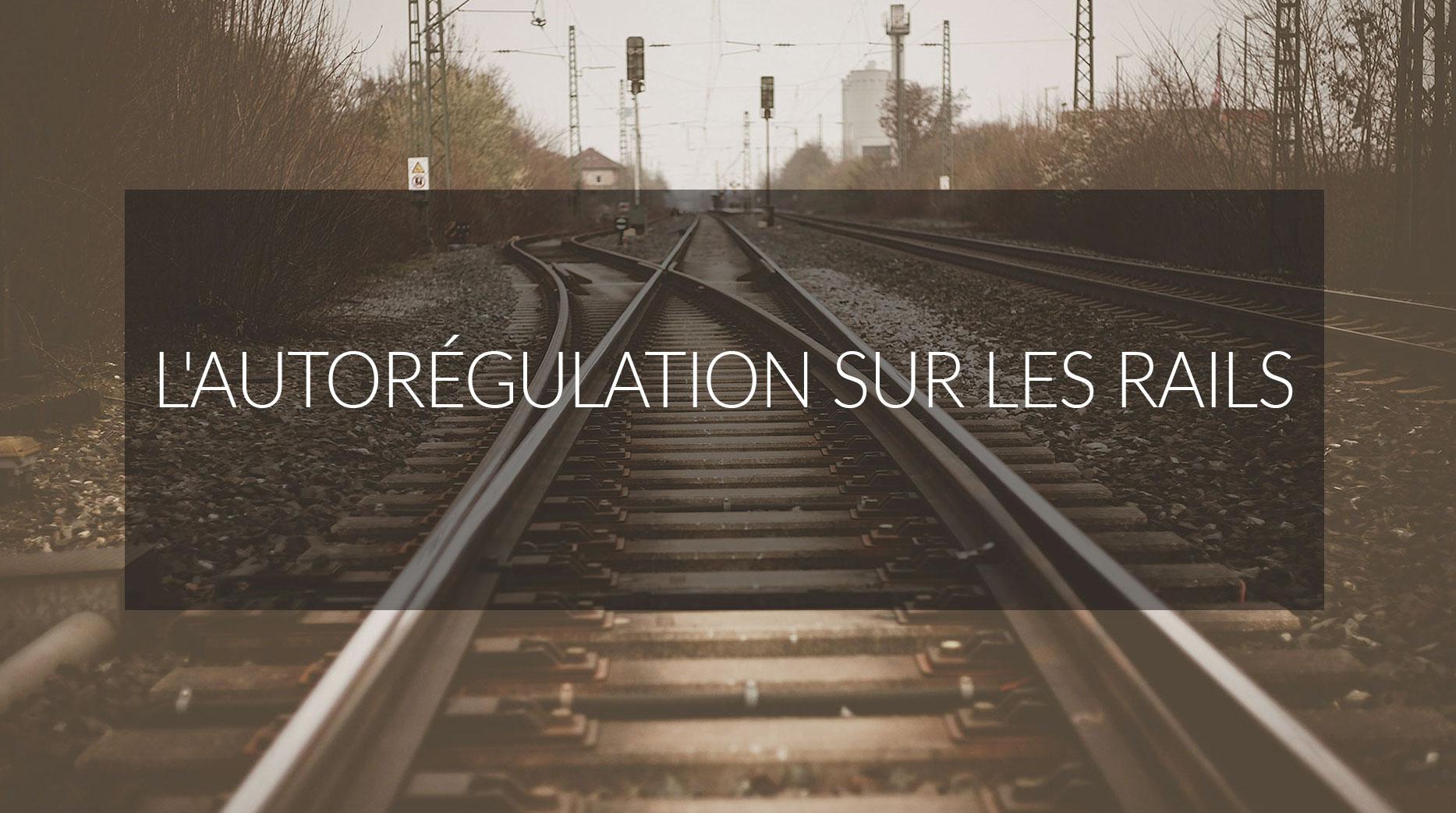Dossier : L'autorégulation sur les rails