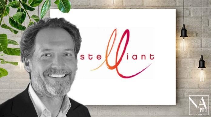 Laurent Mayet, DGA Stelliant