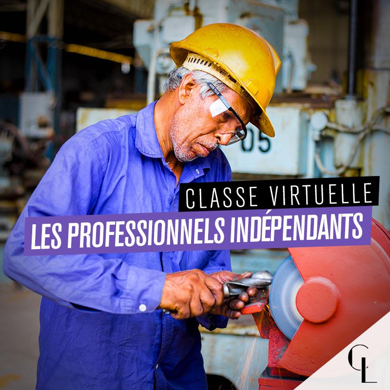 Classe virtuelle : les professionnels indépendants