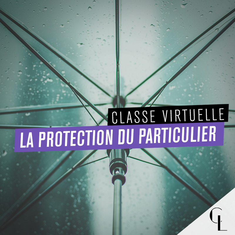 Classe virtuelle : la protection du particulier