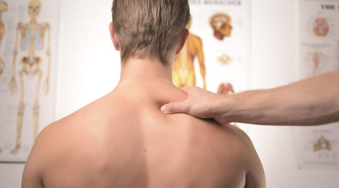 Les troubles musculo squelettiques sont la principale cause des maladies professionnelles.
