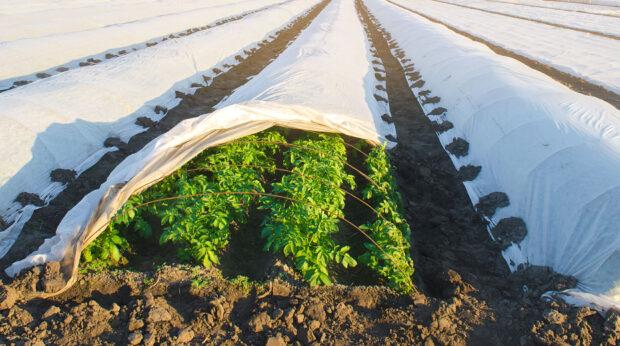 Risques agricoles : La FFA appelle à faire évoluer les couvertures sur récoltes